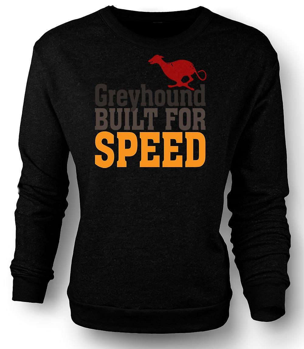 Mens Sweatshirt Greyhound bygd For hastighet