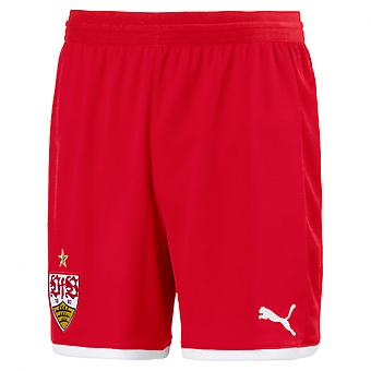 PUMA VfB Stuttgart Replica s Jr with innerslip Kinder Fußball-Shorts Ribbon Rot-Weiss