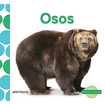 Osos (Bears) by Julie Murray - 9781624026294 Book