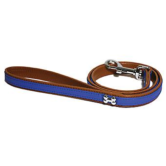 Wag N Walk Designer Lead Royal 3/4