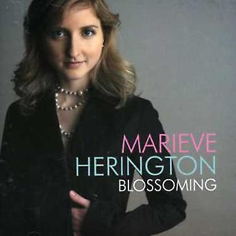 Marieve Herington - Blossoming [CD] USA import
