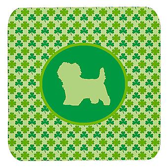 Carolines Treasures  SDK1019-C-FC Set of 4 Cairn Terrier Lucky Shamrock Foam Coa