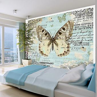 Artgeist Wallpaper Postcard with butterfly (Decoration , Vinyls)