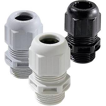 Cable gland M25 Polyamide Light grey