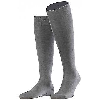 Falke Tiago calcetines hasta la rodilla - gris claro