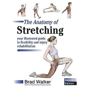 The Anatomy of Stretching - Your Illustrated Guide to Flexibility and