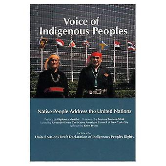 Voice of Indigenous Peoples: Native People Address the United Nations