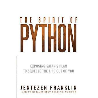 The Spirit of Python