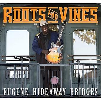Eugene Hideaway broer - rødder & vinstokke [CD] USA import