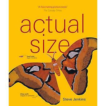 Verklig storlek av Steve Jenkins - Steve Jenkins - 9781847806338 boka