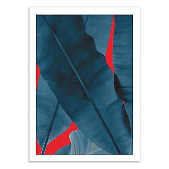 Art-Poster - Tropical part.3 - Leemo 50 x 70 cm